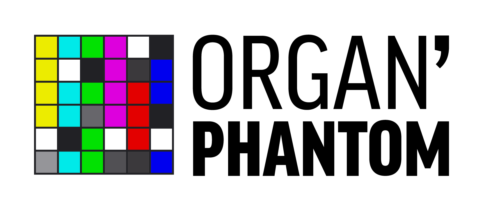 Organ Phantom