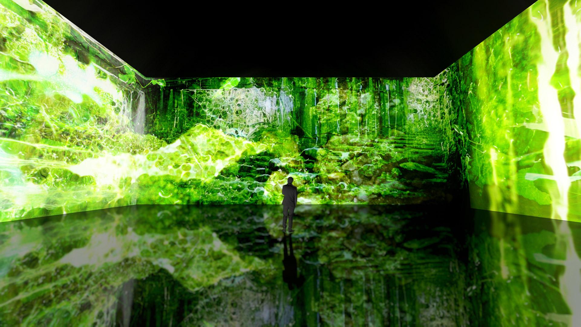 Anitya creation originale immersive Organ Phantom Bassin des Lumieres Bordeaux
